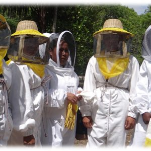 Beekeepers Cooperative