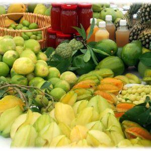 Liamugia Agriculture